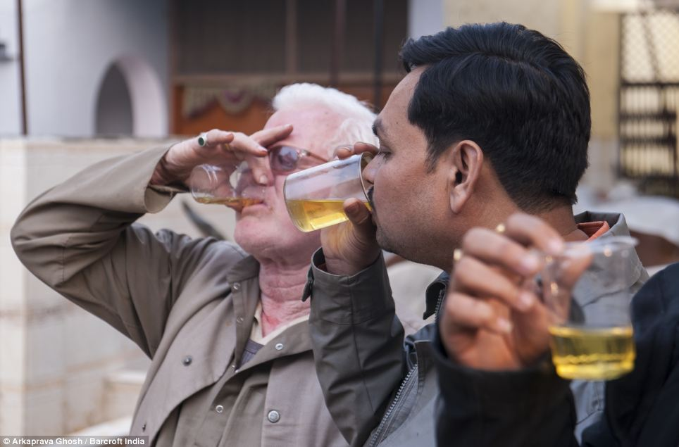 Drinking cow urine can help cure all diseases including cancer: Hindu cult
