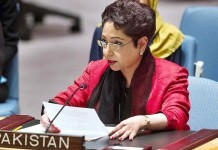 Pakistan to stand by Kashmiris as they struggle for freedom: Maleeha