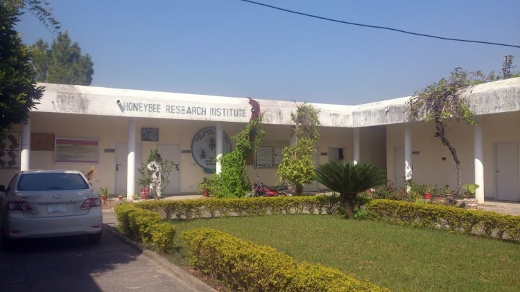 National Agriculture Research Center's (NARC) Honey Bee Research Institute Islamabad