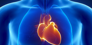 30 to 40% of deaths in Pakistan are due to cardiovascular diseases