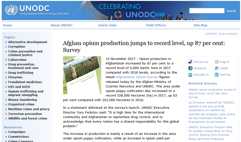 87% hike in opium cultivation and production in Afghanistan, says UNODC