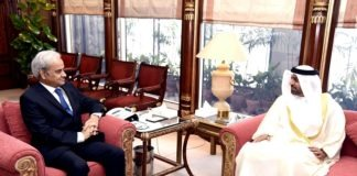 Pakistan to actively participate in EXPO 2020, Nasir-ul-Mulk assures UAE envoy
