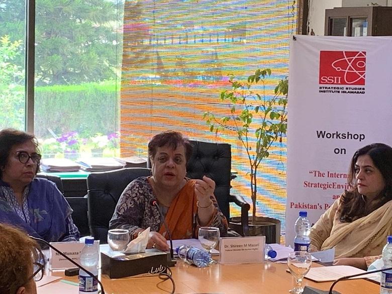 India's NSG membership to put Pakistan at severe disadvantage: Dr Shireen Mazari