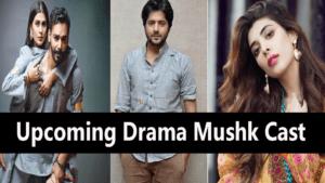 top 5 pakistani drama