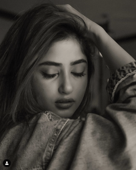 """Sajal Aly is one of the finest actresses in the fresh lot from Pakistan Showbiz Industry and she knows very well how to impress her fans every time with each of her projects. The ever gorgeous Sajal has been posting some classy pictures from her recent formal and informal photo shoots and fans are literally falling in love with her again. Her fragile features with a mesmerizing smile is like spreading colours on the canvas of life. No matter how she dresses up, whether it is traditional or Western, it is Sajal who makes these wears amazingly wonderful. Her latest photos from the Instagram account depict that she is absolutely an epitome of beauty from inside and here we have collected them to make you find her awesomeness once again. Have a look! Sajal's Photos from Instagram In these black & white pictures, Sajal is looking so much attractive with her strong yet romantic facial expressions that one cannot take away eyes from these photos. And... here we have Sajal in some rich traditional look spreading colors all around while posing perfectly for a recent photo shoot. Sajal's Early Life & Career Sajal's first appearance on screen was a minor role in Geo TV's parody dramatization """"Nadaaniyaan"""" in 2009. She also worked for a main role in a few of the other TV series, including the parody Mohabbat Jaye Bhar Mein, the romance Sitamgar, Meri Ladli, the family satire Quddusi Sahab Ki Bewah, and the dramatization Gul-e-Rana. She also participated in numerous different fashion shows and walked on the ramp as a showstopper while stunning everyone for being so gorgeous. Moreover, Sajal also acted for the lead role in Hindi movie """"Mom"""" with the Adnan Siddiqui and famous Indian actress Sridevi. She is famous for her role in family drama Mehmoodabad Ki Malkain. Sajal Aly's performance in the teenager drama Nanhi (2013), Sannata (2013), the revenge drama Chup Raho (2014) and the ethereal romance in Khuda Dekh Raha Hai (2015), made her earn amazing level of acknowledgment across"""